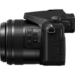 Panasonic Lumix DMC FZ2500 (1)